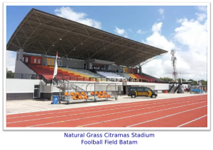 natural-grass-batam-stadium murticahaya