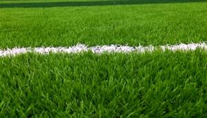 sythetic_grass_grass