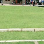 gallery-rumput-natural-2
